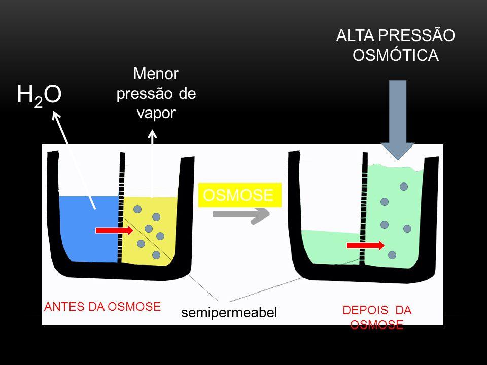 H2OH2O ALTA PRESSÃO OSMÓTICA Menor pressão de vapor ANTES DA OSMOSE DEPOIS DA OSMOSE OSMOSE