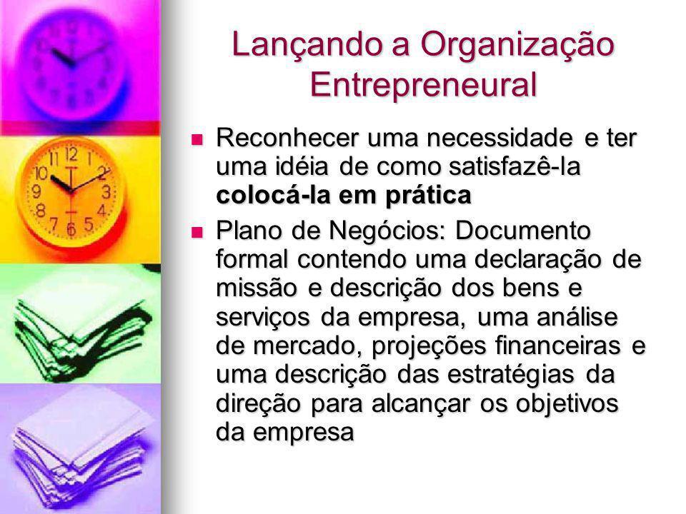 Lançando a Organização Entrepreneural Reconhecer uma necessidade e ter uma idéia de como satisfazê-la colocá-la em prática Reconhecer uma necessidade