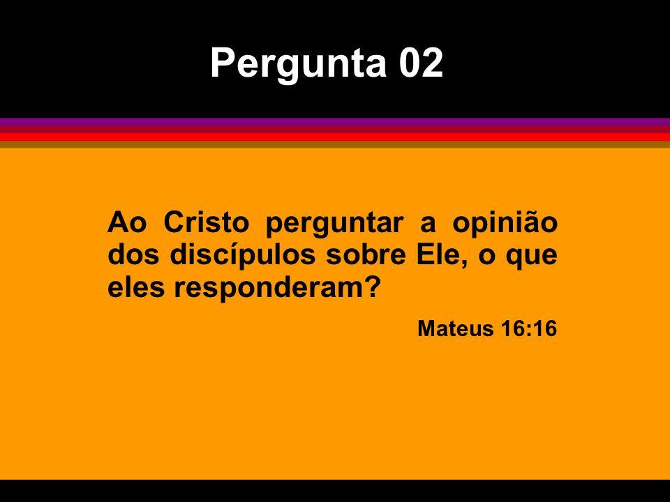 Ao Cristo perguntar a opinião dos discípulos sobre Ele, o que eles responderam? Mateus 16:16 Pergunta 02