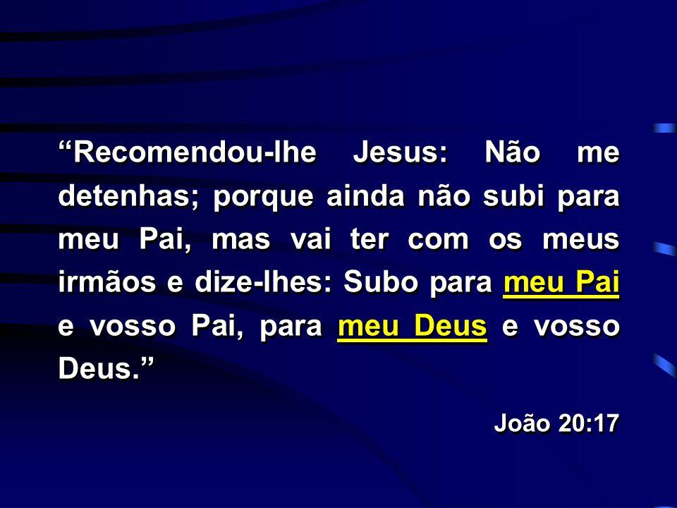 """""""Recomendou-lhe Jesus: Não me detenhas; porque ainda não subi para meu Pai, mas vai ter com os meus irmãos e dize-lhes: Subo para meu Pai e vosso Pai,"""