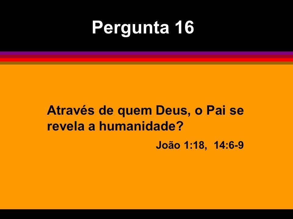 Através de quem Deus, o Pai se revela a humanidade? João 1:18, 14:6-9 Pergunta 16
