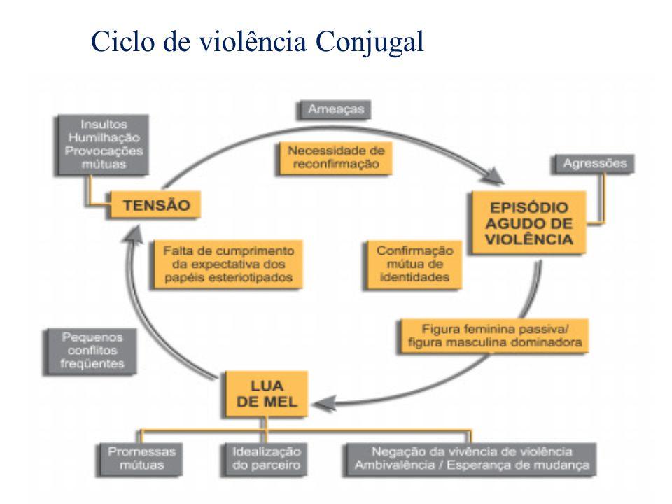 Ciclo de violência Conjugal