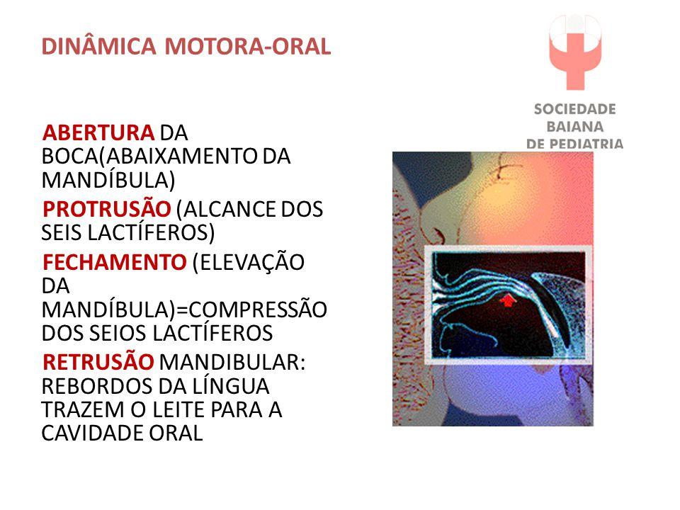 DINÂMICA MOTORA-ORAL ABERTURA DA BOCA(ABAIXAMENTO DA MANDÍBULA) PROTRUSÃO (ALCANCE DOS SEIS LACTÍFEROS) FECHAMENTO (ELEVAÇÃO DA MANDÍBULA)=COMPRESSÃO DOS SEIOS LACTÍFEROS RETRUSÃO MANDIBULAR: REBORDOS DA LÍNGUA TRAZEM O LEITE PARA A CAVIDADE ORAL