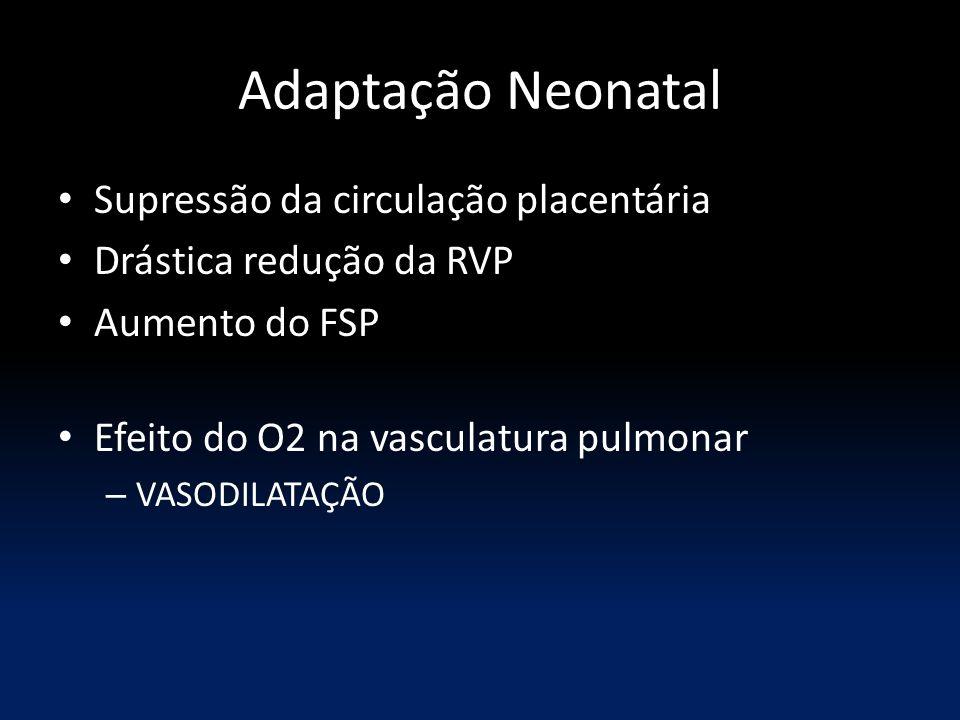Adaptação Neonatal Supressão da circulação placentária Drástica redução da RVP Aumento do FSP Efeito do O2 na vasculatura pulmonar – VASODILATAÇÃO