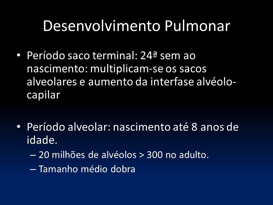 Desenvolvimento Pulmonar Período saco terminal: 24ª sem ao nascimento: multiplicam-se os sacos alveolares e aumento da interfase alvéolo- capilar Período alveolar: nascimento até 8 anos de idade.
