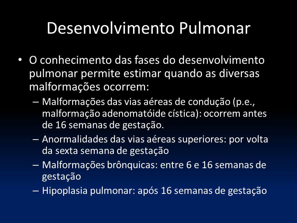 Desenvolvimento Pulmonar O conhecimento das fases do desenvolvimento pulmonar permite estimar quando as diversas malformações ocorrem: – Malformações das vias aéreas de condução (p.e., malformação adenomatóide cística): ocorrem antes de 16 semanas de gestação.