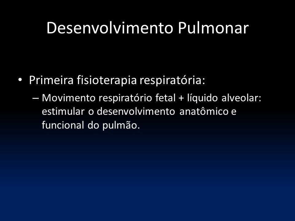 Desenvolvimento Pulmonar Primeira fisioterapia respiratória: – Movimento respiratório fetal + líquido alveolar: estimular o desenvolvimento anatômico e funcional do pulmão.