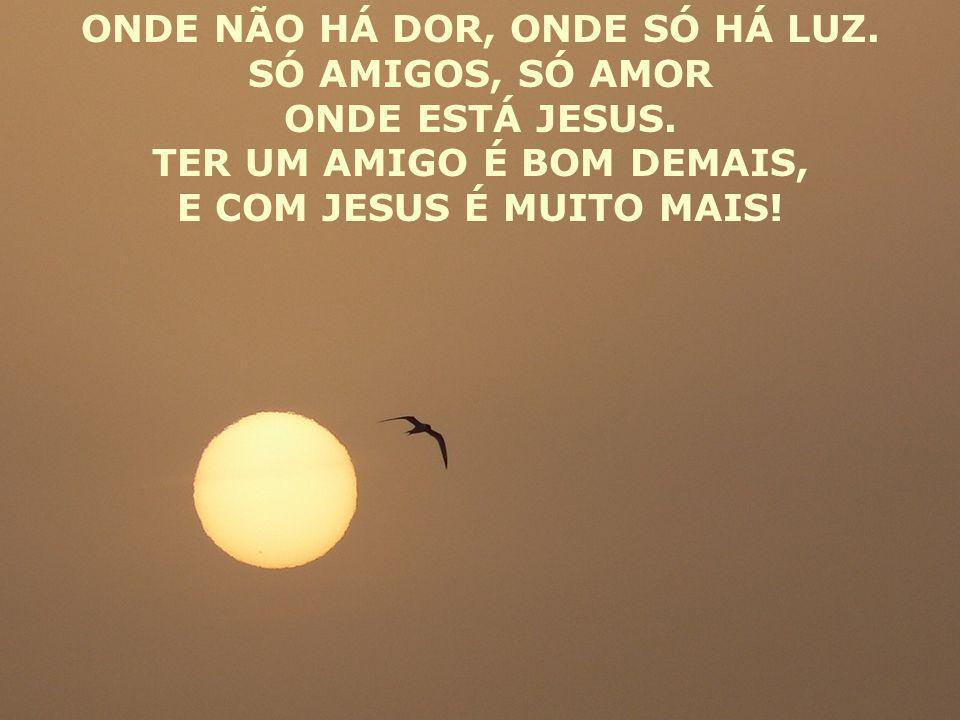 ONDE NÃO HÁ DOR, ONDE SÓ HÁ LUZ. SÓ AMIGOS, SÓ AMOR ONDE ESTÁ JESUS. TER UM AMIGO É BOM DEMAIS, E COM JESUS É MUITO MAIS!
