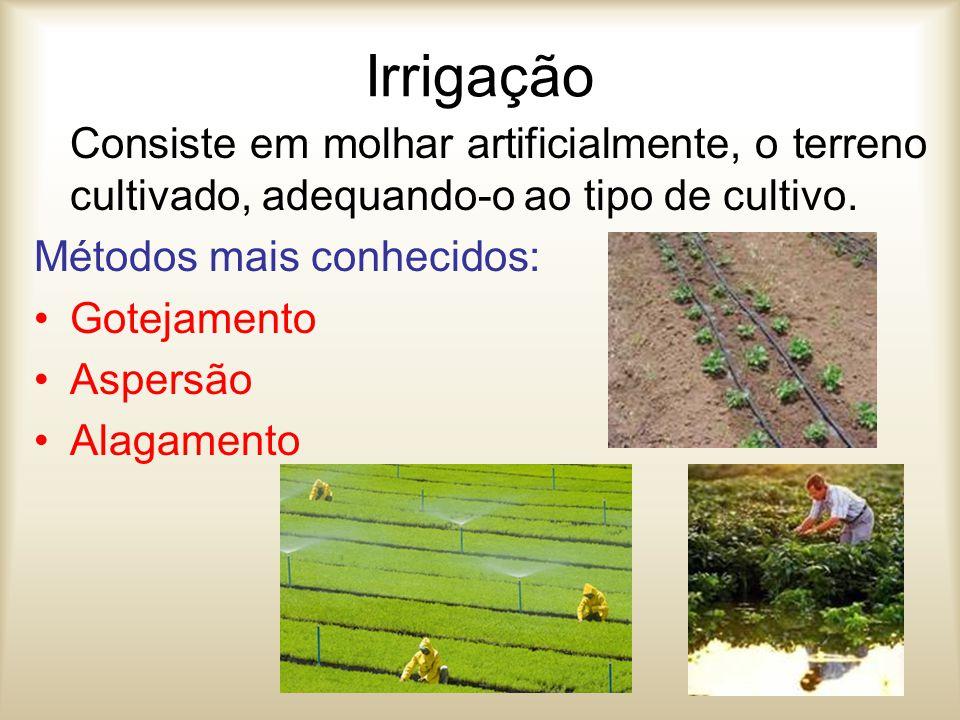 Irrigação Consiste em molhar artificialmente, o terreno cultivado, adequando-o ao tipo de cultivo. Métodos mais conhecidos: Gotejamento Aspersão Alaga