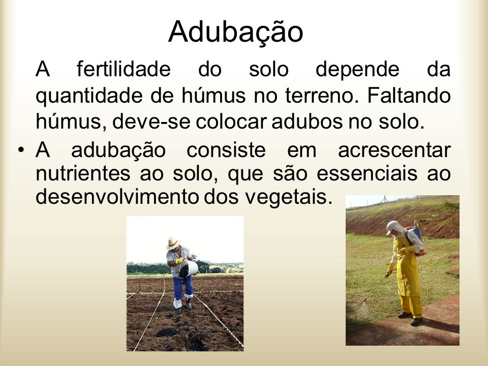 Tipos de adubação Adubação orgânica – utiliza-se adubos naturais, fornecidos pelos seres vivos (excrementos de animais ou partes de vegetais como folhas, frutos, raízes) em decomposição: esterco húmus de minhoca compostagem