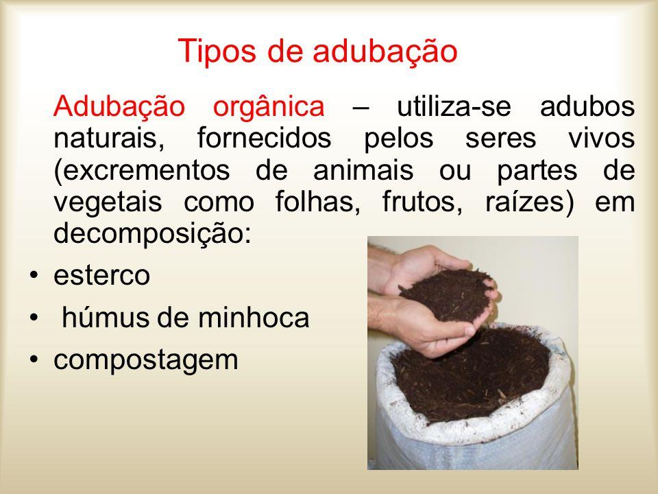 Tipos de adubação Adubação orgânica – utiliza-se adubos naturais, fornecidos pelos seres vivos (excrementos de animais ou partes de vegetais como folh