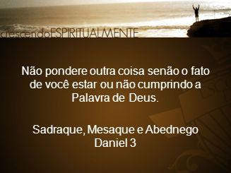 Não pondere outra coisa senão o fato de você estar ou não cumprindo a Palavra de Deus. Sadraque, Mesaque e Abednego Daniel 3