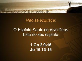 1 Co 2.9-16 Jo 16.13-15 Não se esqueça: O Espírito Santo do Vivo Deus Está no seu espírito.