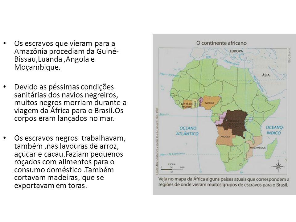 Os escravos que vieram para a Amazônia procediam da Guiné- Bissau,Luanda,Angola e Moçambique.