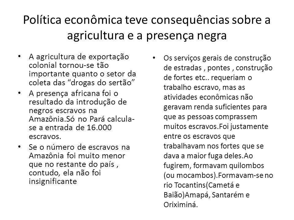 Política econômica teve consequências sobre a agricultura e a presença negra A agricultura de exportação colonial tornou-se tão importante quanto o se