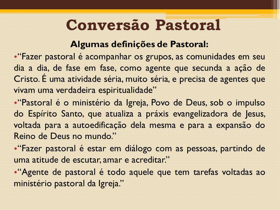 Conversão Pastoral Algumas definições de Pastoral: Fazer pastoral é acompanhar os grupos, as comunidades em seu dia a dia, de fase em fase, como agente que secunda a ação de Cristo.