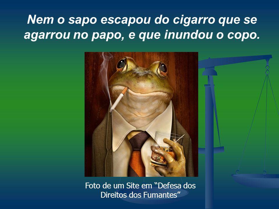 """Nem o sapo escapou do cigarro que se agarrou no papo, e que inundou o copo. Foto de um Site em """"Defesa dos Direitos dos Fumantes"""""""