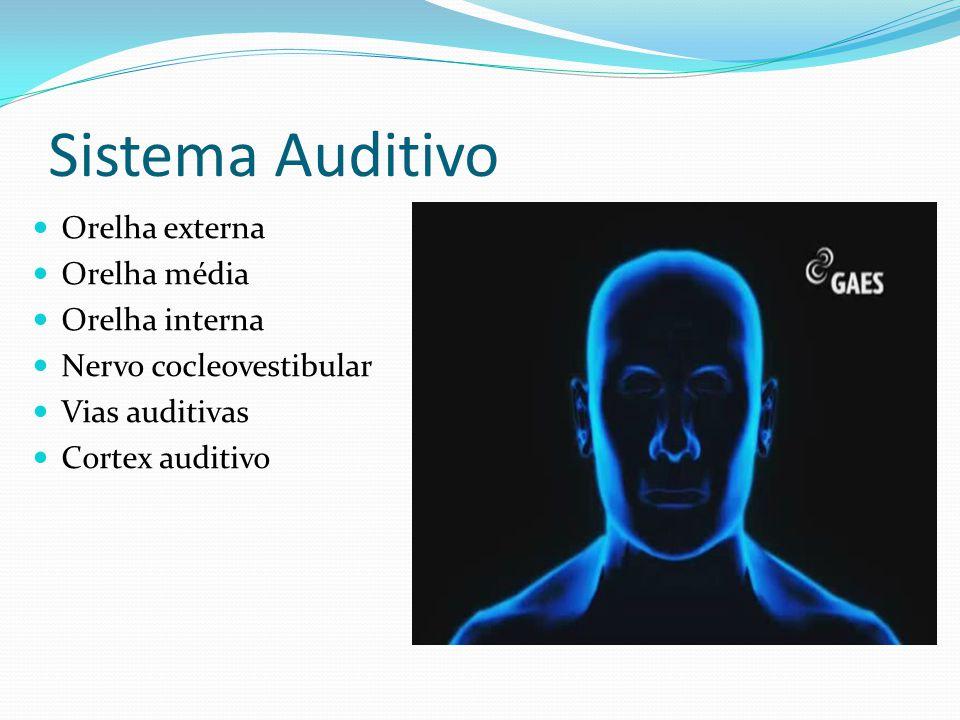 Sistema Auditivo Orelha externa Orelha média Orelha interna Nervo cocleovestibular Vias auditivas Cortex auditivo