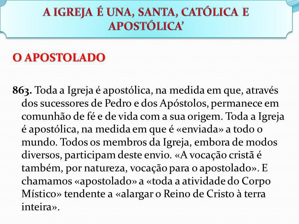 O APOSTOLADO 863. Toda a Igreja é apostólica, na medida em que, através dos sucessores de Pedro e dos Apóstolos, permanece em comunhão de fé e de vida