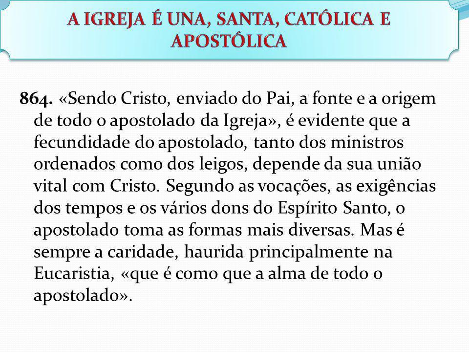 864. «Sendo Cristo, enviado do Pai, a fonte e a origem de todo o apostolado da Igreja», é evidente que a fecundidade do apostolado, tanto dos ministro