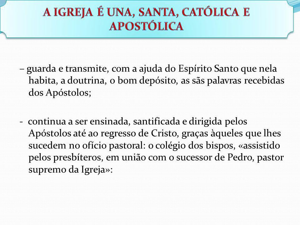 – guarda e transmite, com a ajuda do Espírito Santo que nela habita, a doutrina, o bom depósito, as sãs palavras recebidas dos Apóstolos; - continua a