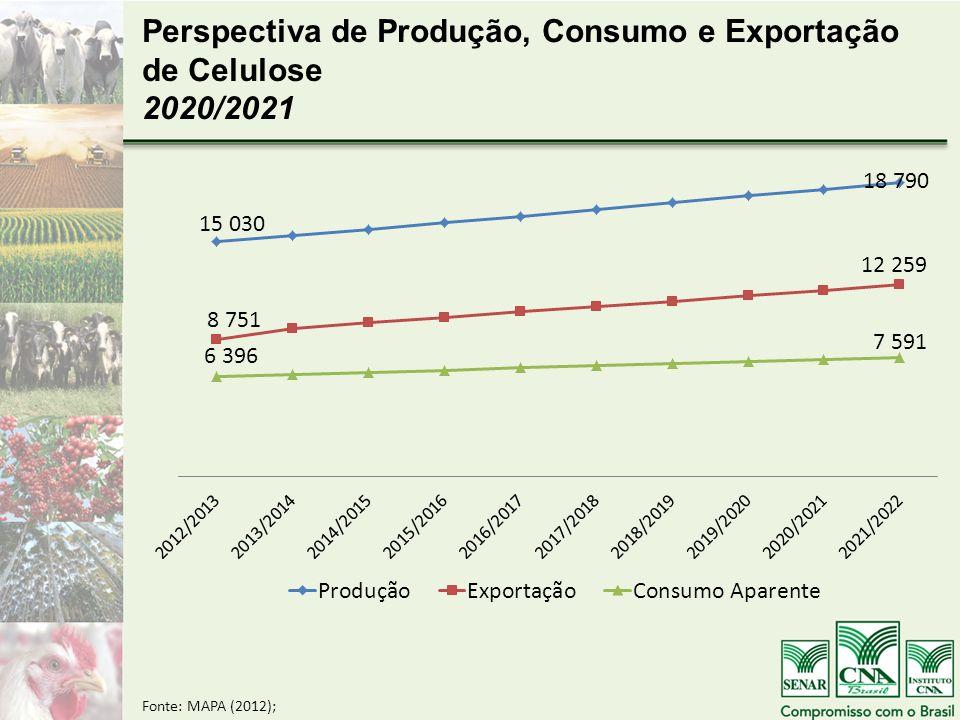 Perspectiva de Produção, Consumo e Exportação de Celulose 2020/2021 Fonte: MAPA (2012);