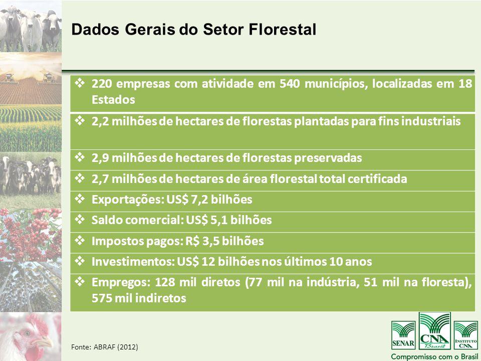  220 empresas com atividade em 540 municípios, localizadas em 18 Estados  2,2 milhões de hectares de florestas plantadas para fins industriais  2,9 milhões de hectares de florestas preservadas  2,7 milhões de hectares de área florestal total certificada  Exportações: US$ 7,2 bilhões  Saldo comercial: US$ 5,1 bilhões  Impostos pagos: R$ 3,5 bilhões  Investimentos: US$ 12 bilhões nos últimos 10 anos  Empregos: 128 mil diretos (77 mil na indústria, 51 mil na floresta), 575 mil indiretos Dados Gerais do Setor Florestal Fonte: ABRAF (2012)