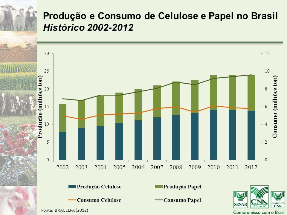 Produção e Consumo de Celulose e Papel no Brasil Histórico 2002-2012 Fonte: BRACELPA (2012)