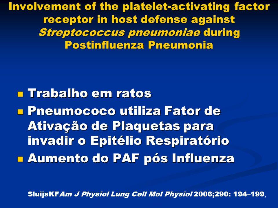 Involvement of the platelet-activating factor receptor in host defense against Streptococcus pneumoniae during Postinfluenza Pneumonia Trabalho em rat