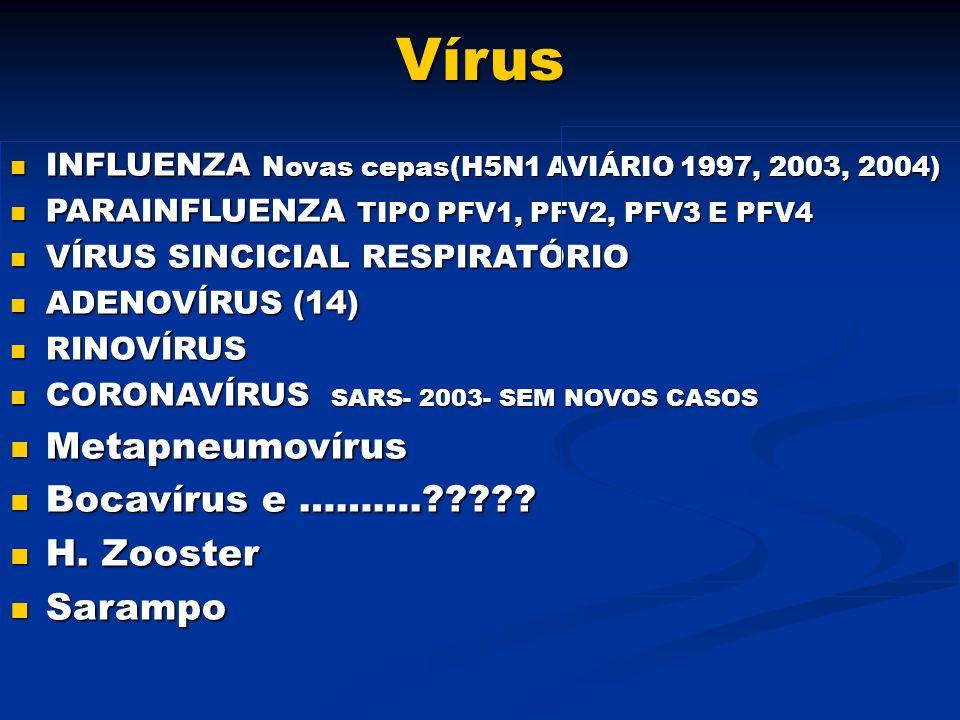 Vírus INFLUENZA Novas cepas(H5N1 AVIÁRIO 1997, 2003, 2004) INFLUENZA Novas cepas(H5N1 AVIÁRIO 1997, 2003, 2004) PARAINFLUENZA TIPO PFV1, PFV2, PFV3 E