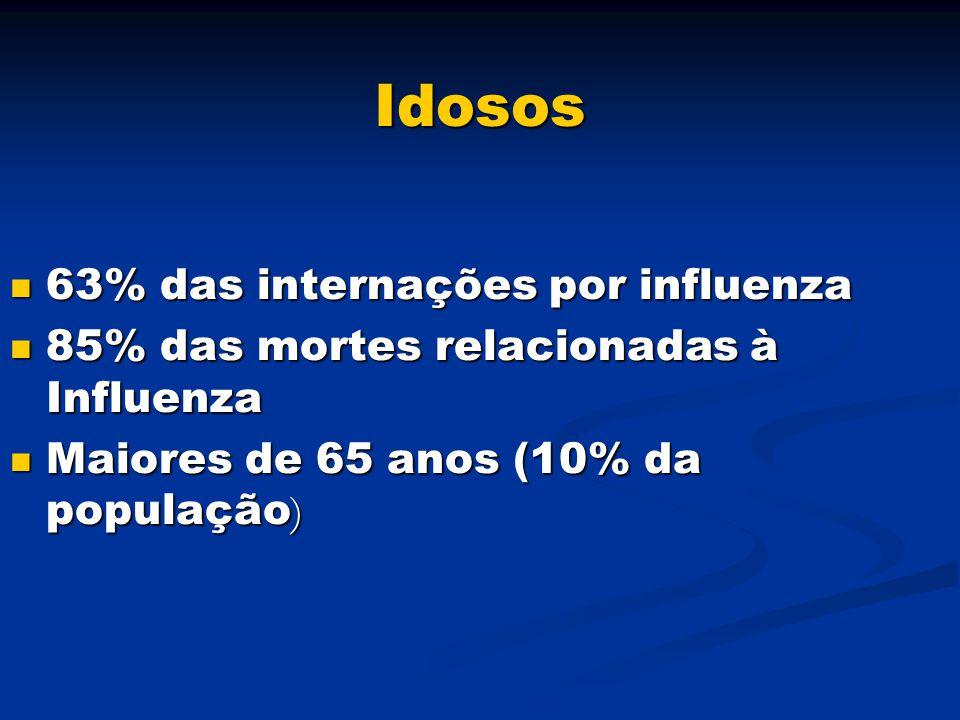 Idosos 63% das internações por influenza 63% das internações por influenza 85% das mortes relacionadas à Influenza 85% das mortes relacionadas à Influ