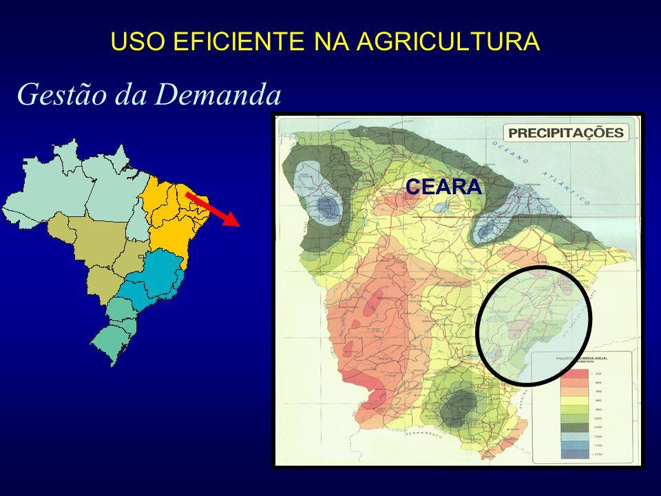 Gestão da Demanda CEARA USO EFICIENTE NA AGRICULTURA