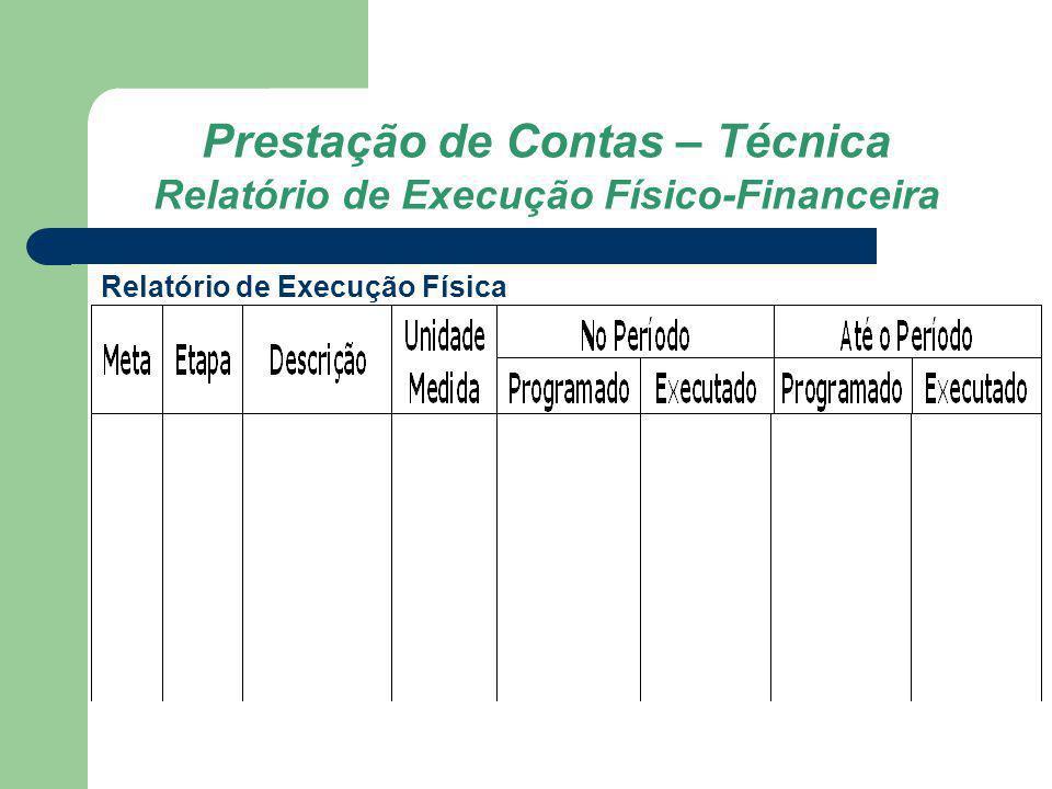 Prestação de Contas – Técnica Relatório de Execução Físico-Financeira Relatório de Execução Física