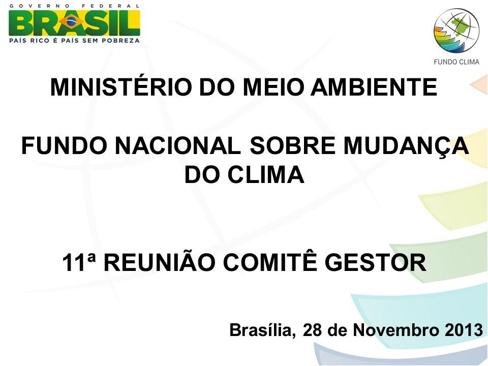 MINISTÉRIO DO MEIO AMBIENTE FUNDO NACIONAL SOBRE MUDANÇA DO CLIMA 11ª REUNIÃO COMITÊ GESTOR Brasília, 28 de Novembro 2013