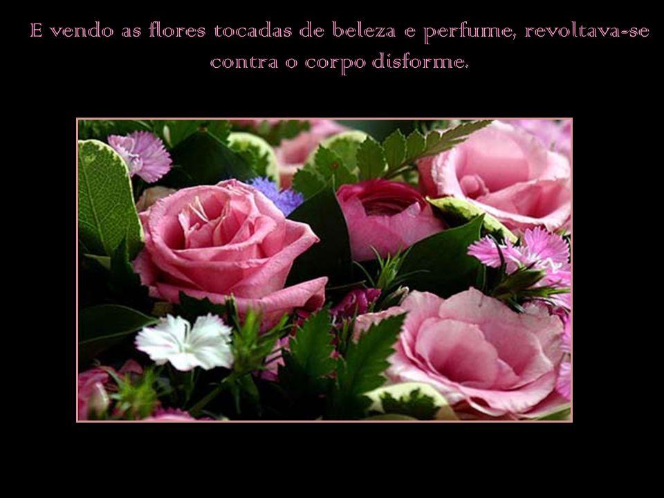 E vendo as flores tocadas de beleza e perfume, revoltava-se contra o corpo disforme.