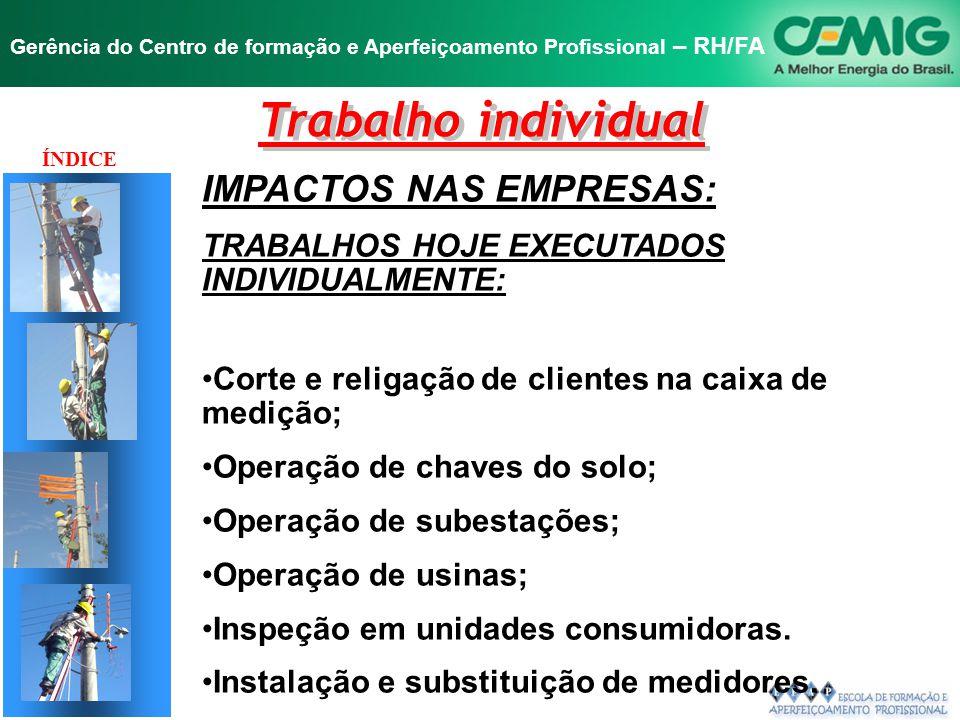 NR-10 SEGURANÇA EM INSTALAÇÕES E SERVIÇOS EM ELETRICIDADE Gerência do Centro de formação e Aperfeiçoamento Profissional – RH/FA JUSTIFICATIVA DAS EMPR