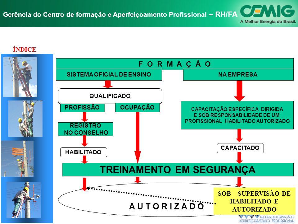 NR-10 SEGURANÇA EM INSTALAÇÕES E SERVIÇOS EM ELETRICIDADE Gerência do Centro de formação e Aperfeiçoamento Profissional – RH/FA 10.8 HABILITAÇÃO, QUAL