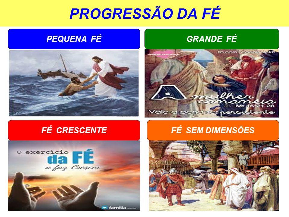 PROGRESSÃO DA FÉ PEQUENA FÉ FÉ SEM DIMENSÕES GRANDE FÉ FÉ CRESCENTE