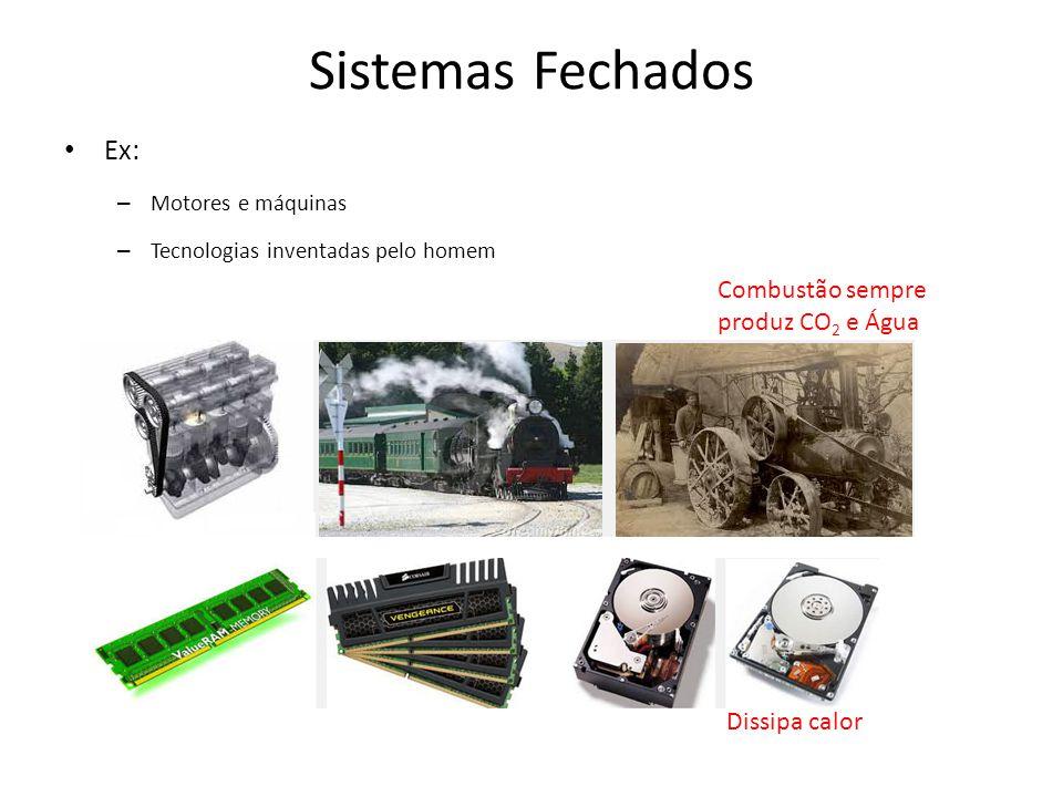 Sistemas Fechados Ex: – Motores e máquinas – Tecnologias inventadas pelo homem Combustão sempre produz CO 2 e Água Dissipa calor