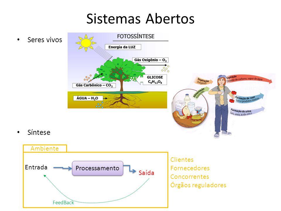 Sistemas Abertos Seres vivos Síntese Entrada Saída Processamento FeedBack Clientes Fornecedores Concorrentes Órgãos reguladores Ambiente