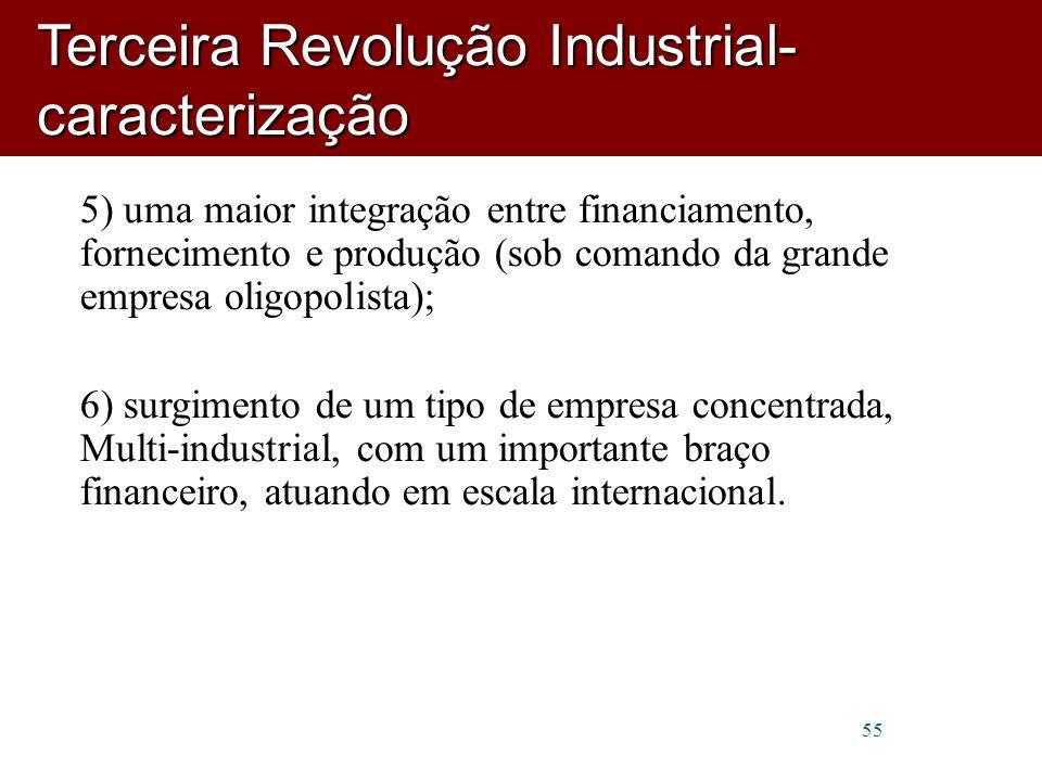 55 5) uma maior integração entre financiamento, fornecimento e produção (sob comando da grande empresa oligopolista); 6) surgimento de um tipo de empresa concentrada, Multi-industrial, com um importante braço financeiro, atuando em escala internacional.