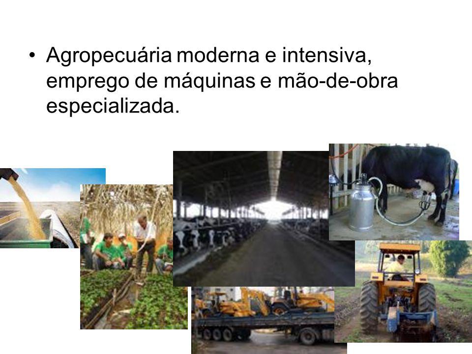 Agropecuária moderna e intensiva, emprego de máquinas e mão-de-obra especializada.