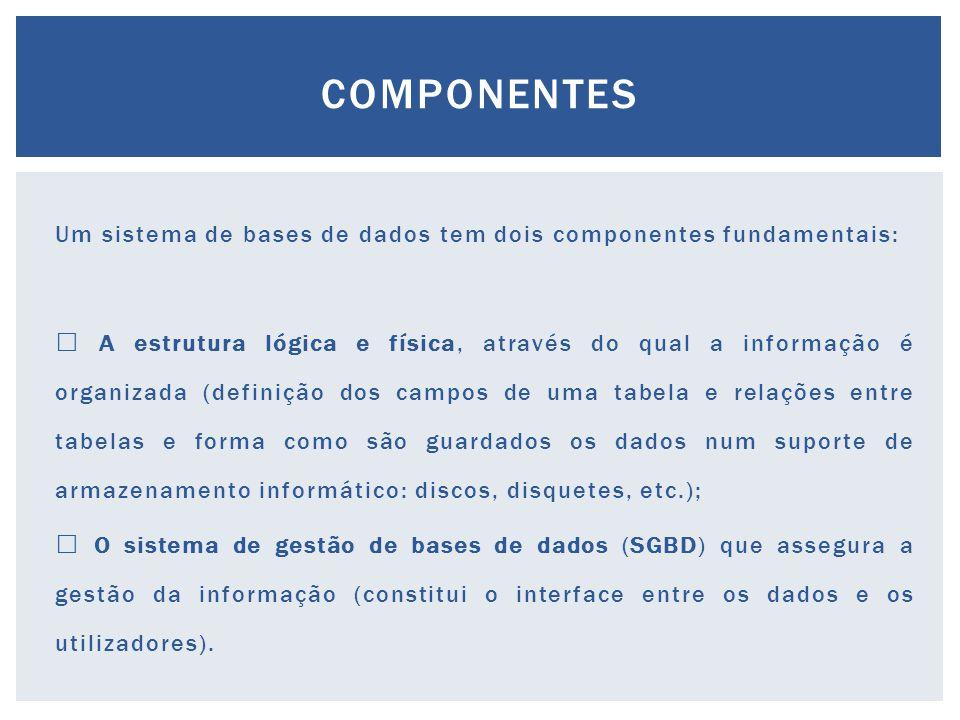Um sistema de bases de dados tem dois componentes fundamentais:  A estrutura lógica e física, através do qual a informação é organizada (definição dos campos de uma tabela e relações entre tabelas e forma como são guardados os dados num suporte de armazenamento informático: discos, disquetes, etc.);  O sistema de gestão de bases de dados (SGBD) que assegura a gestão da informação (constitui o interface entre os dados e os utilizadores).
