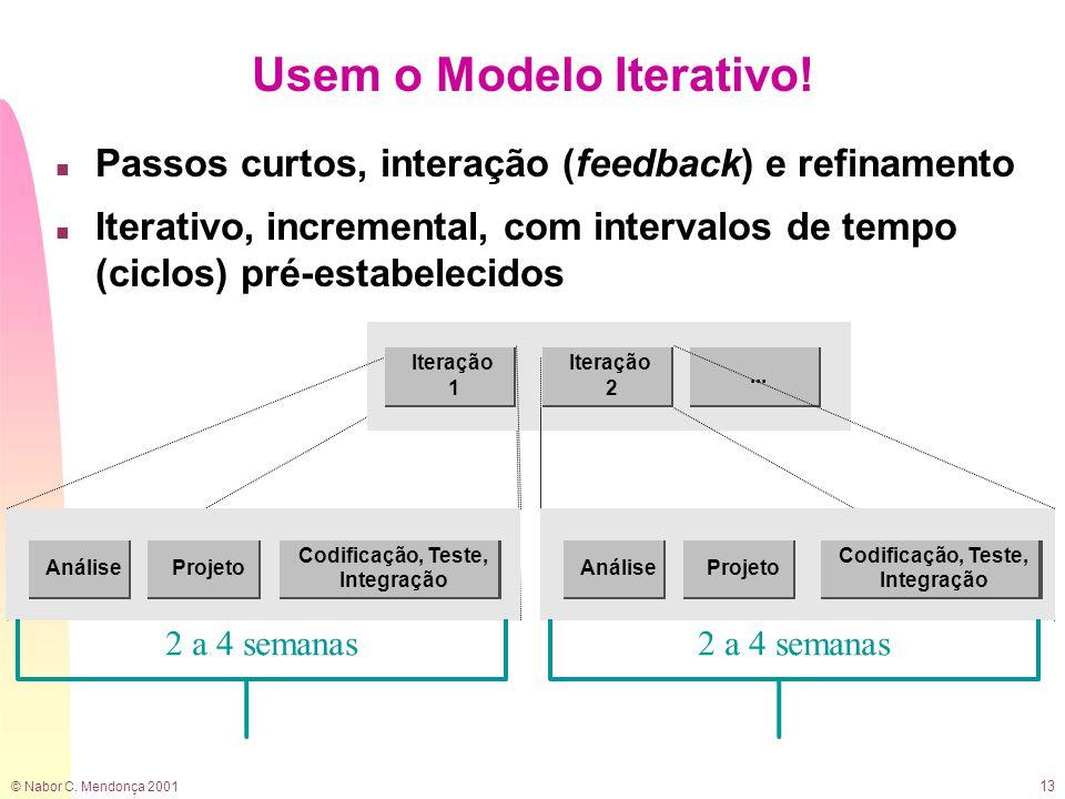 © Nabor C. Mendonça 2001 13 Usem o Modelo Iterativo.
