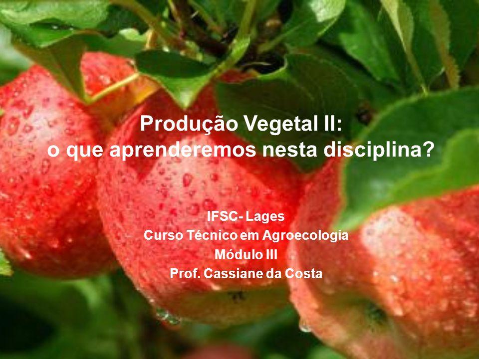 Produção Vegetal II: o que aprenderemos nesta disciplina? IFSC- Lages Curso Técnico em Agroecologia Módulo III Prof. Cassiane da Costa