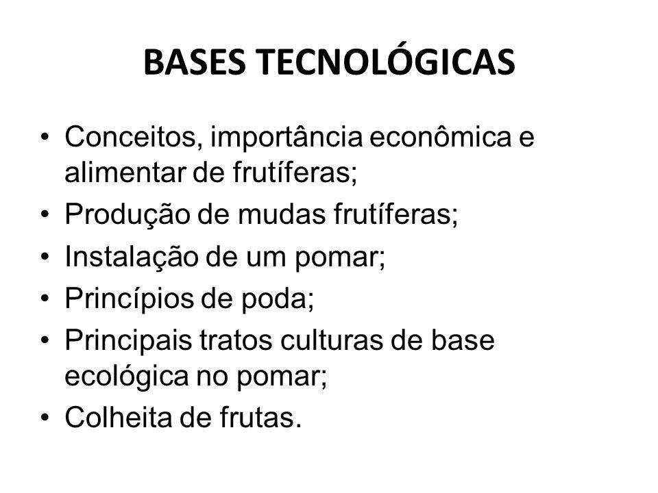 BASES TECNOLÓGICAS Conceitos, importância econômica e alimentar de frutíferas; Produção de mudas frutíferas; Instalação de um pomar; Princípios de pod