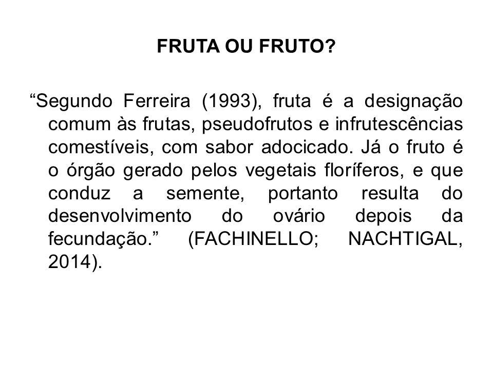 """FRUTA OU FRUTO? """"Segundo Ferreira (1993), fruta é a designação comum às frutas, pseudofrutos e infrutescências comestíveis, com sabor adocicado. Já o"""
