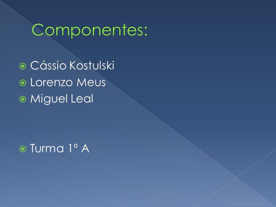  Cássio Kostulski  Lorenzo Meus  Miguel Leal  Turma 1º A