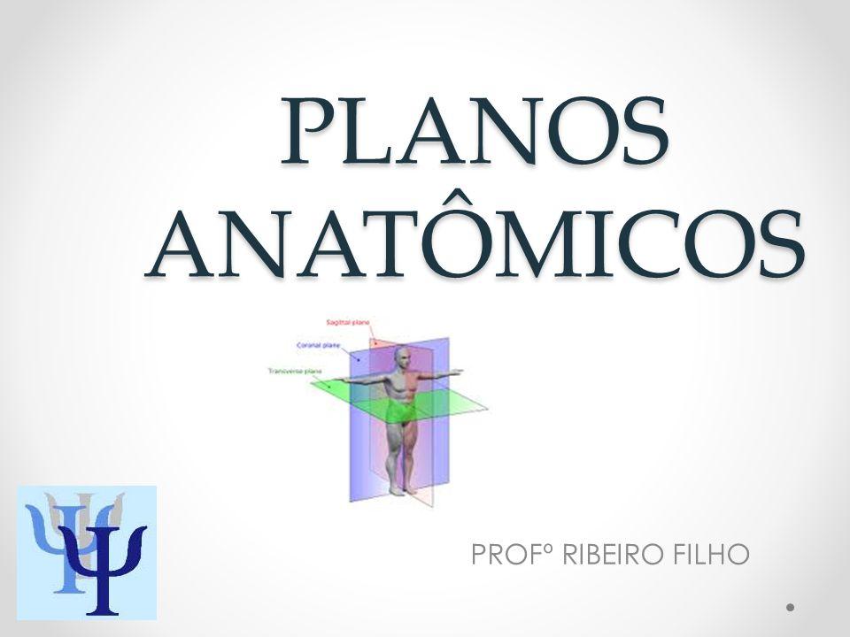 PLANOS ANATÔMICOS PROFº RIBEIRO FILHO
