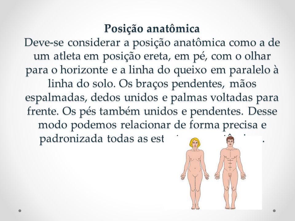 Posição anatômica Deve-se considerar a posição anatômica como a de um atleta em posição ereta, em pé, com o olhar para o horizonte e a linha do queixo